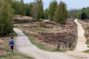 Teverener-Heide-20130429